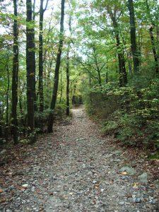 Appalachian Trail Tunnel